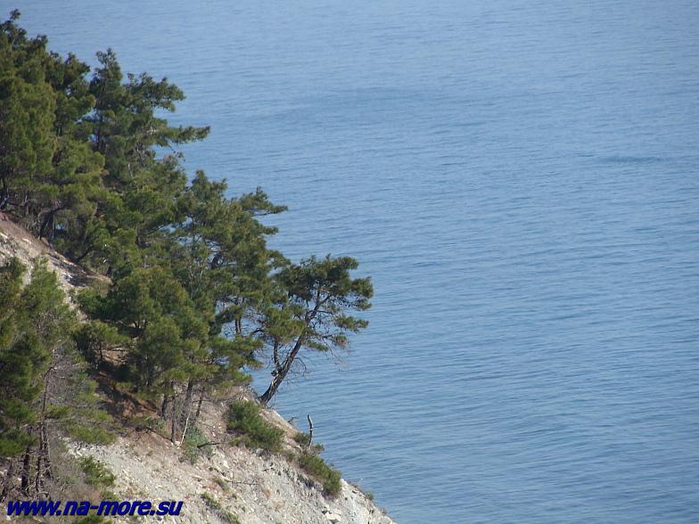На прибрежных скалах Чёрного моря.